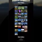 Page de galerie du site du Gite Pollen